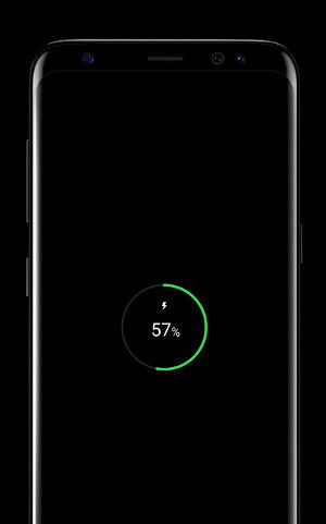 The Galaxy S8 supports fast charge and wireless charging