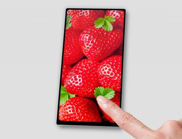 JDI introduces its new 6-inch QHD screen - Japan Display announces new 6-inch display with 18:9 aspect ratio