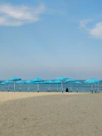 OP5-beach-zoom.jpg