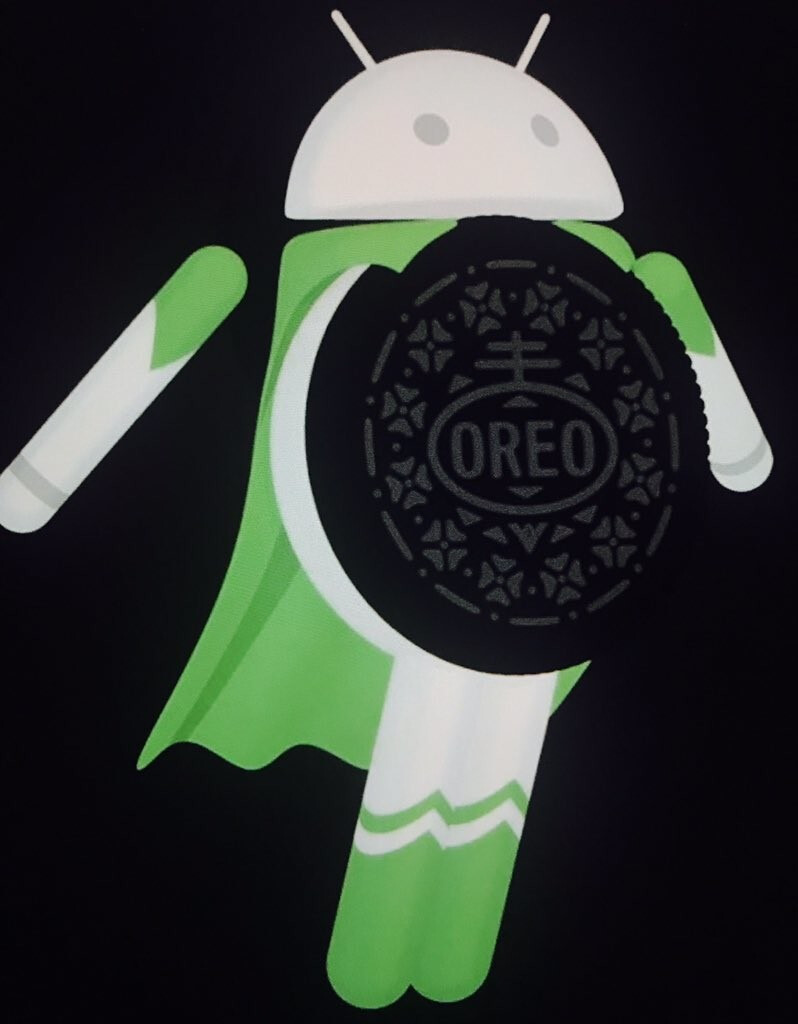 Leaked image shows the name (and mascot?) of the next Android OS version