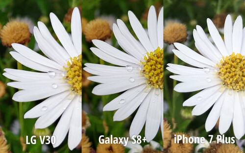 LG V30 vs Galaxy S8+ vs iPhone 7 Plus: first look camera comparison