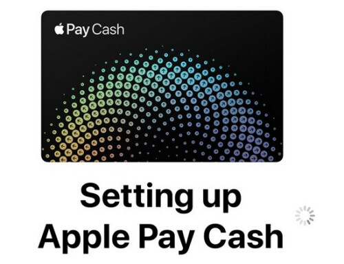 Leaked screenshot shows part of the set up screen for Apple Pay Cash