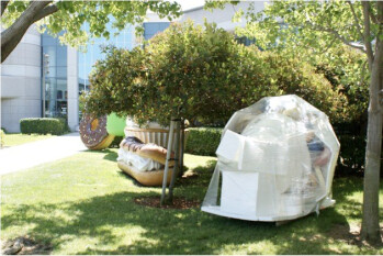 A wrapped Froyo at the Googleplex