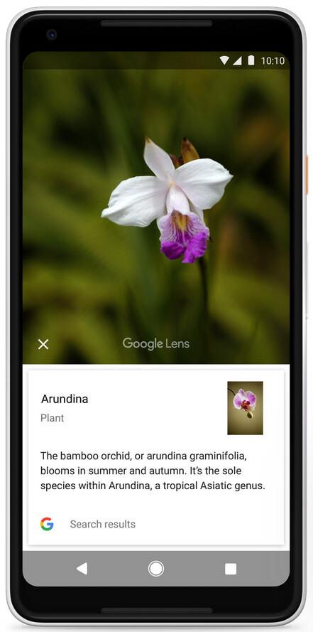 Google Lens Apple
