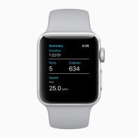 AppleWatchSeries3summary20282018.jpg