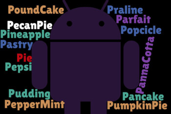 One of these could be the official name of Android P
