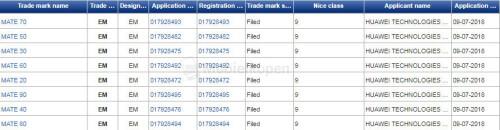 Huawei Mate line trademarks