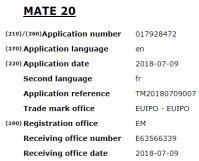 mate-20.png