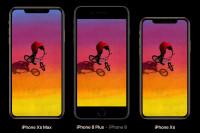 iphones-new-comparison-size