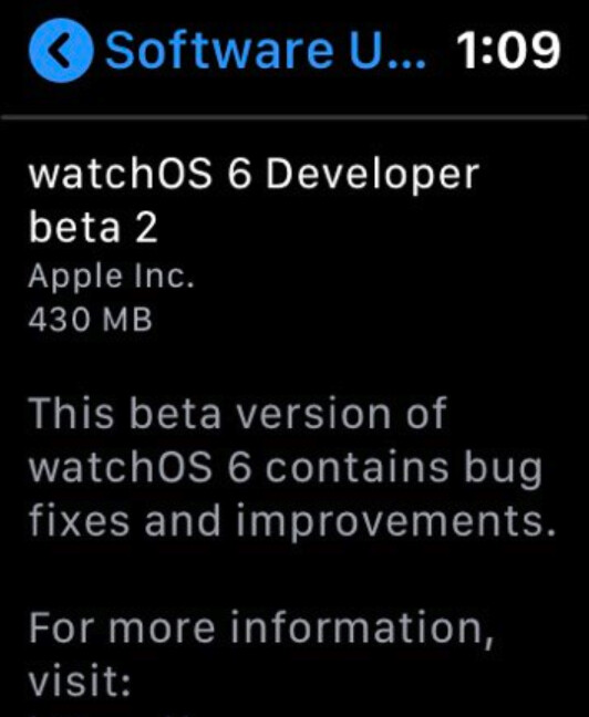With watchOS 6, the Apple Watch can load OTA updates from its Settings menu - Apple Watch cuts more ties with the iPhone in latest watchOS 6 beta