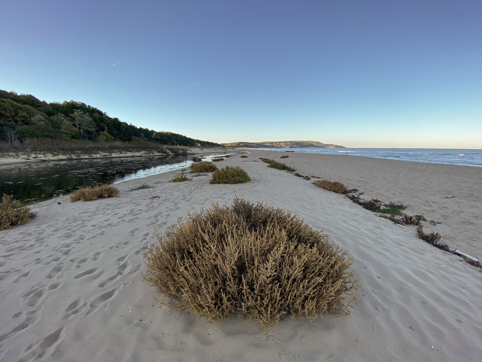 Ultra wide-angle - How to use iPhone 11 Pro's ultra wide-angle camera to take awesome pictures