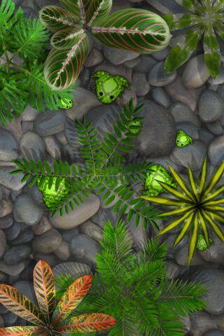 Pocket Frogs downloaded over 3 million times, brings $1 million to its creators
