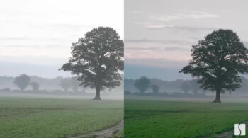 The picture on the right shows how Spectral Edge's technology enhances the color of a photo taken with a smartphone. The photo first appeared in a 2016 Tech Crunch story - What Apple did last month could lead to better images from the 2020 iPhone cameras