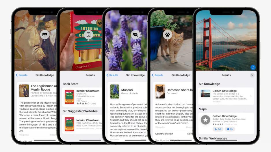 Visual Look Up de Apple sigue el modelo de Google Lens