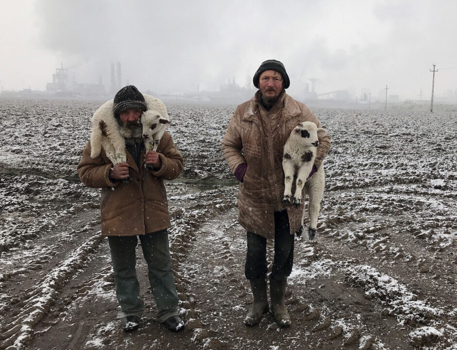 Transylvanian Shepherds, Shot on iPhone 7 by Targu Mures, Transylvania, Romania - And the 2021 iPhone Photography Awards go to... the iPhone 7