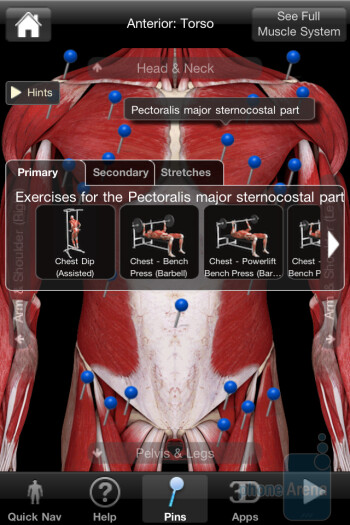 iMuscle relies on 3D models and animation in order to visualize the exercises