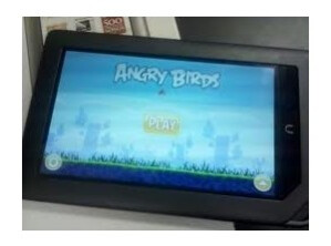 The Barnes and Noble Nook Color is the first device to get Angry Birds Magic