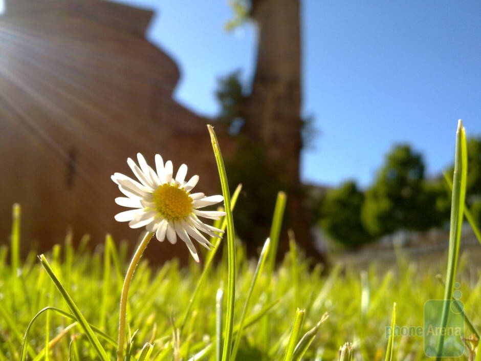 3. Dobell - Nokia N85Flor - Cool images, taken with your cell phone #7