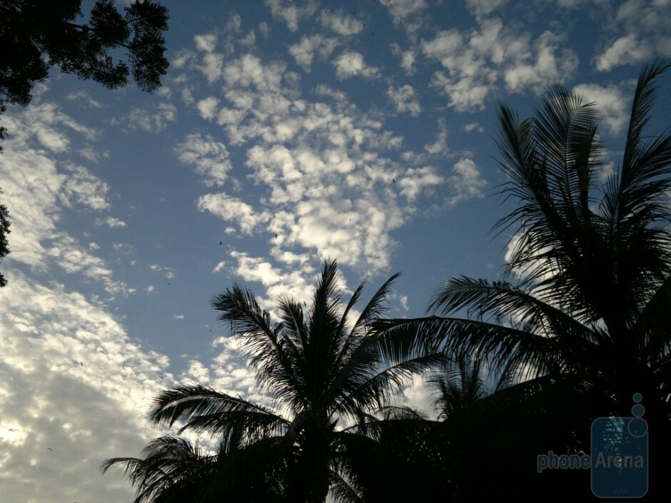 14. Saad Asad Khatri - Nokia N8Coconut Tree Silhouette - Cool images, taken with your cell phone #9