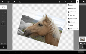 You can import images and manipulate them