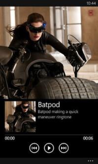 bat-6.jpg