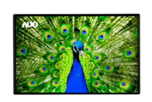 AUO also has a 2560 x 1600-pixel 10-inch screen