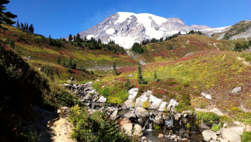 Andrew Roach - HTC One XParadise at Mt Rainier