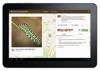 Amplify tablet interface