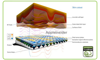The Apple iPhone 5S fingerprint scanner will use technology acquired by Apple last year