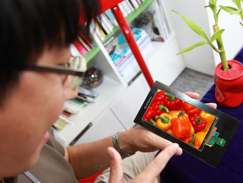 LG Display's new Quad HD smartphone panel