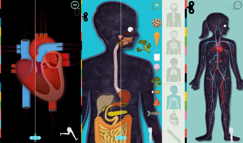 The Human Body by Tinybop - iOS - $2.99