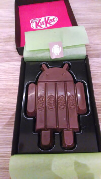 Android-4.4-KitKat-Larry-Page