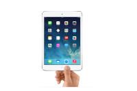 iPad-mini-2-15