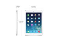 iPad-mini-2-16