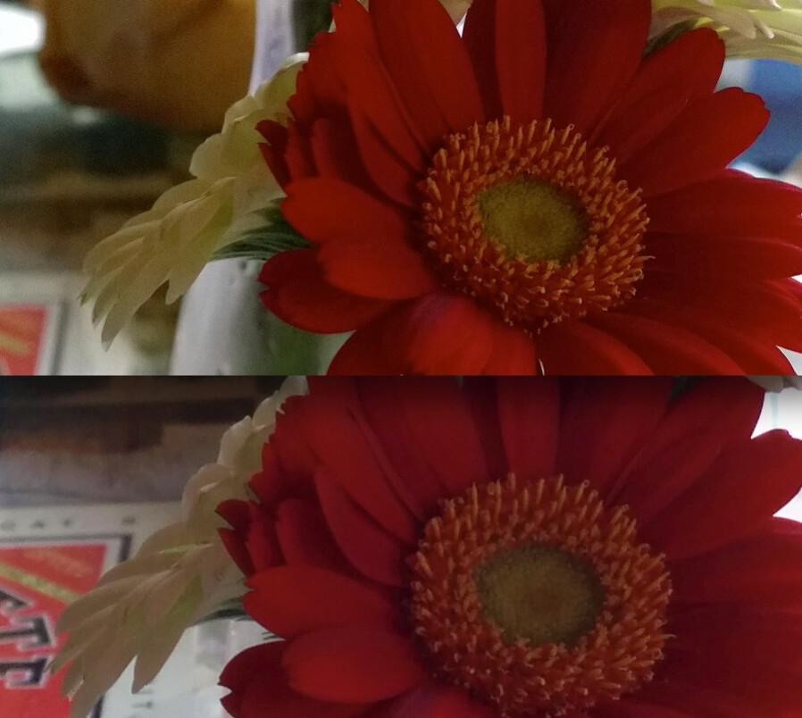 مقارنة بين كاميرا Nexus 5 و كاميرا العملاق Lumia 1020