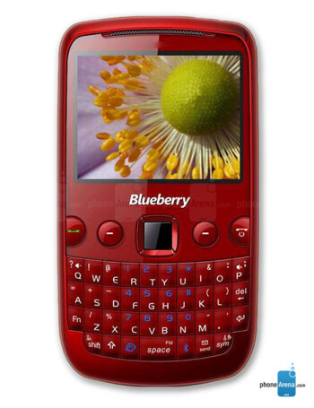 spice mobile blueberry mini video clips rh phonearena com Spice List Spices and Their Uses Chart