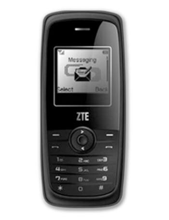 ZTE S308