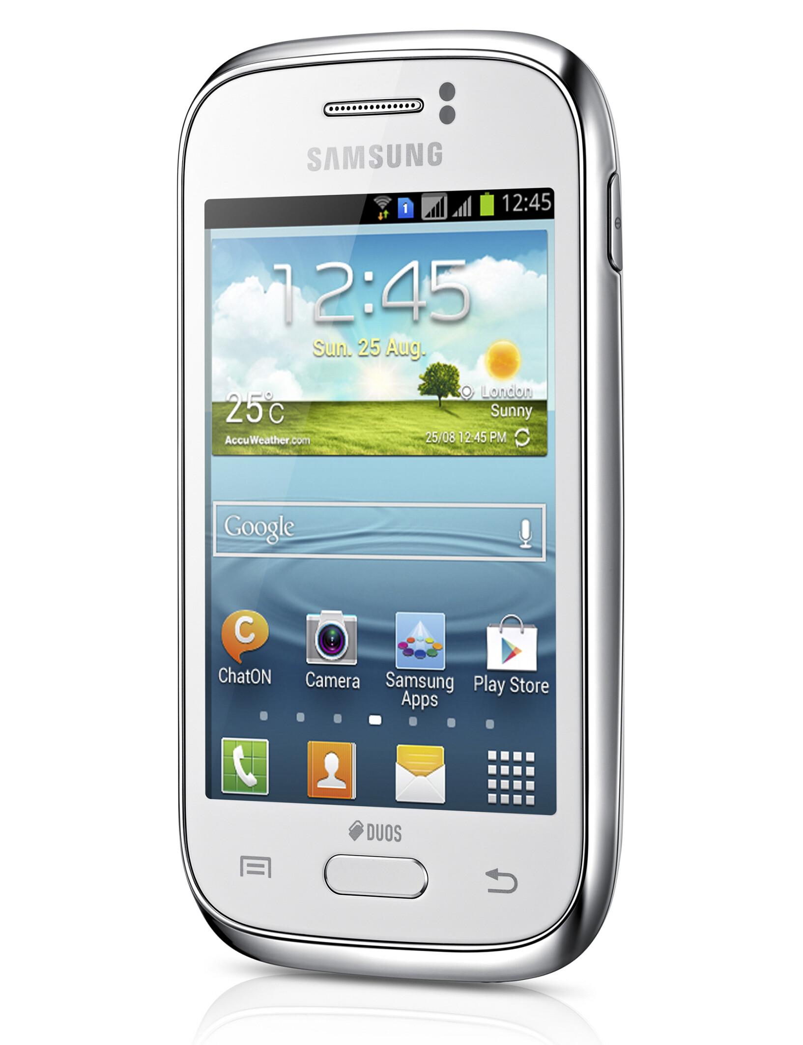 Samsung Galaxy Young 3