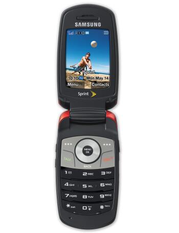 Samsung SPH-M300
