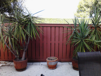 Outdoor samples shot with the LG Enlighten - LG Enlighten Review