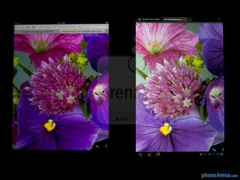 Both the Apple iPad 3 (left) and the Asus Transformer Prime (right) share the same wide-viewing angles and vivid color tones - Apple iPad 3 vs Asus Transformer Prime