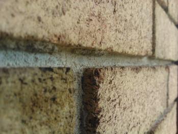 Sample images shot with the Nokia Lumia 900 - Nokia Lumia 900 Review