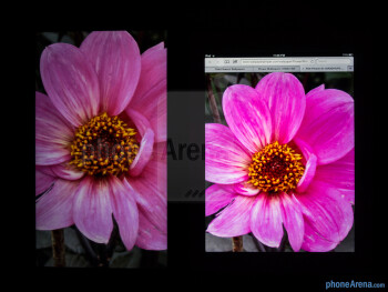 Color production of the Microsoft Surface Pro (left) and the Apple iPad 4 (right) - Microsoft Surface Pro vs Apple iPad 4