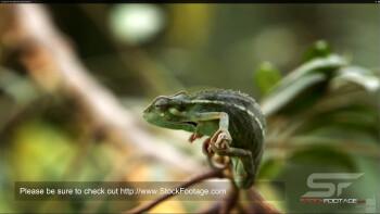 Native 4K video watching - Samsung ATIV Q Review