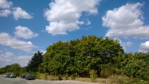 Nokia Lumia 625 Sample Images