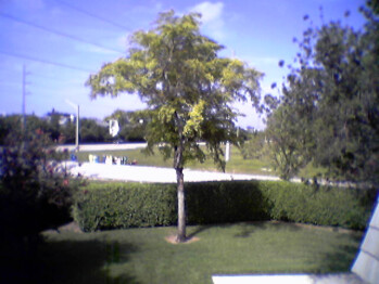 Outdoor - Old Verizon Cameraphones - Verizon Cameraphone Comparison Q2 2007