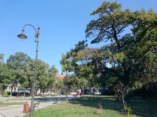 Sony Xperia Z3 Compact sample images