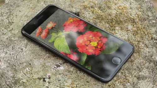 Apple iPhone 7 Review