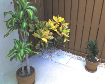 Outdoor images - Motorola Q9m Review