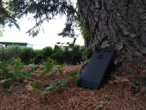 Asus ZenFone 4 Selfie Pro sample images